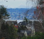 Laurelhurst View Homes